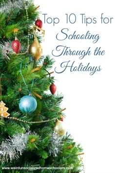 The season from Thanksgiving to New Year's can be busy and stressful. Make it easier on your family with these tips for schooling through the holidays.