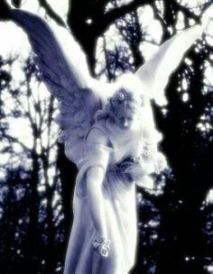 Looks so real. Mom In Heaven, Angel Statues, Sky Aesthetic, Spirit Guides, Angel Wings, Cherub, Faeries, Unicorns, Gnomes