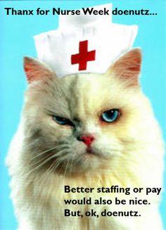 #ClassWarKitteh for nurse week