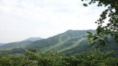 화담숲 정상에서 바라본 반대편의 탁트인 전경