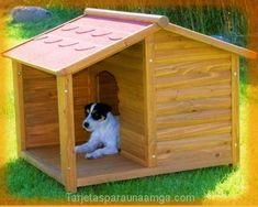fotos de casas para perros