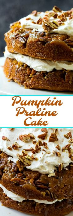Pumpkin Praline Torte with fresh whipped cream.