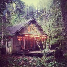 All I want is a primitive cabin in the woods... Is that too much to ask?