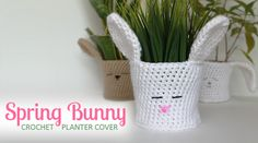 Crochet a Spring Bunny Planter Cover for your plants with this quick pictorial and pattern -- perfect for Easter! Crochet Rabbit, Hand Crochet, Free Crochet, Crochet Planter Cover, Grandma Crafts, Pots, Easter Crochet Patterns, Crochet Ideas, Cute Easter Bunny