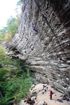 Red River Gorge, Daniel Boone National Forest, Wolfe County, Kentucky, USA. Where fuzzy underclings is.