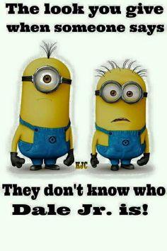 whaaaaaaaaat?!!! JR. NATION ROCKS!                                                                                                                                                      More School Quotes, School Humor, Cute Minions, Funny Minion, Minion Jokes, Minions Quotes, Funny Jokes, Minion Stuff, Funny Sayings About Work