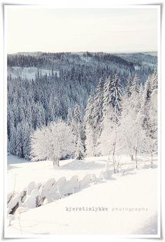Norwegian winter in the mountains