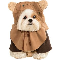 Transform your dog into a cuddly creature from a galaxy far, far away with our Ewok Dog Costume. This Star Wars dog costume includes a jacket and Ewok dog headpiece. Pet Costumes For Dogs, Pet Halloween Costumes, Cat Costumes, Funny Halloween, Costume Ideas, Spirit Halloween, Costume Patterns, Halloween Halloween, Rudolph Costume