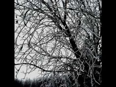 Ov Hollowness - Diminished to the Cold
