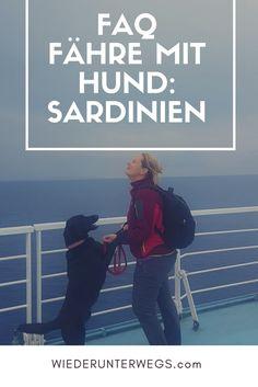 Auf der Sardinia Ferries mit Hund. Hier findest Du alle Antworten für Fähre mit Hund. Europe Travel Guide, Dog Travel, Camping, Places To Go, Road Trip, Dogs, Wanderlust, Hotels, Group