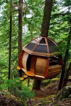 Cabane toute en rondeur #dccv #treehouse #cabane #wood #design