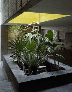 La maison en beton de Pedro Reyes a Mexico