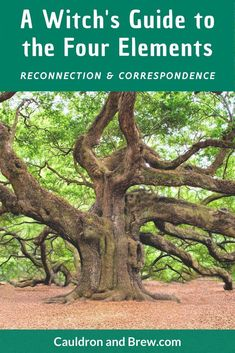 Reconnecting to the Elements and your magic. A Guide to Activities for the Elements in Witchcraft. Wicca Witchcraft, Wiccan Witch, Magick Spells, Air Magic, 5 Elements, Elements Of Nature, Witchcraft For Beginners, Hedge Witch, Herbal Magic