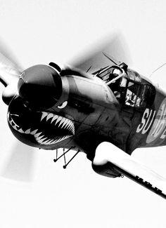 escadrille de pilotes américains les tigres volants (en anglais Flying Tigers)