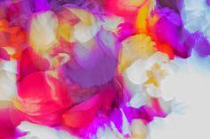 Spring focus, #composingwithcolors, #viewbug