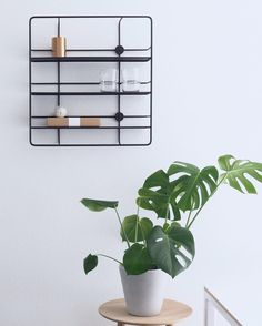 The versatile Coupé shelf designed by @poiat_office in a minimalistic setting. The black and white Coupé series is available in 3 different sizes. Browse them all and find nearest retailer at woud.dk  Photo & Styling: @scandifan #woud #wouddesign #nordisk #nordic #design #nordicdesign #scandinavian #scandinaviandesign #interiordesign #interior #blog #magazine #style #create #inspiration  #interiør #indretning #hjem #home #møbler #levgodt #new #nyt #newin #pin #pinit #pinterest #style…