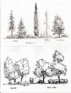 entourage - trees … #LandscapeDrawing #LandscapingSketch