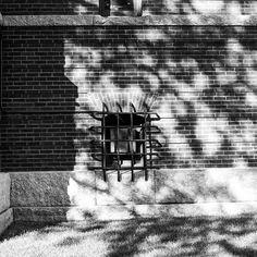 """#exploring #wandering #exploreusa  #exploreAmerica #summer #August #bnw #blackandwhite #daylight #bw_society_buildings #bw_society #bnw_captures #bnw_city #bnw_usa #Massachusetts #cambridge"" Photo taken by @ndoocy on Instagram, pinned via the InstaPin iOS App! http://www.instapinapp.com (09/15/2015)"