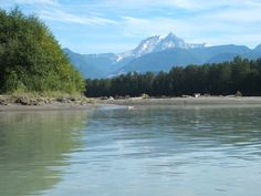 Echo Lake, Island Park, The Province, In The Tree, British Columbia, Kayaking, Hiking, Trees, Boat