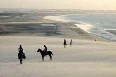 paseo mis caballos en la playa es lo que me hace sentir libre.