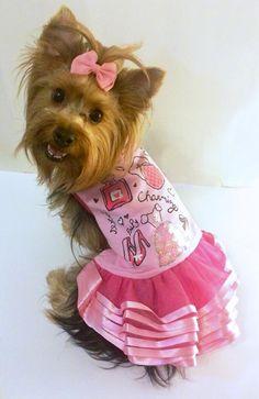 Ropa y accesorios para mascotas, encuentra el vestido ideal para tu perro. Modelo Perfume ideal para esta primavera verano. visitanos en www.toutmignon.net