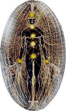 The human body is a cosmic listening post in a vast ocean of frequencies and vibrations of energy. We have connections to energy fields all around and within us.                                                                                                                                                                                 Más