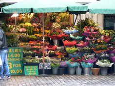 Google Image Result for http://www.musingwallart.com/Architecture/London-Art-Photographs/London-Flower-Market-1/1222423104_nRYdp-L.jpg