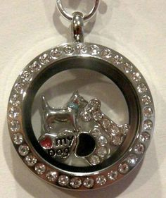 Pet lover! Email me to get origami owl charm free living_lockets@yahoo.com Laughlovelockets.origamiowl.com