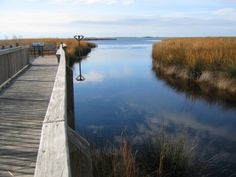 Corolla, NC -- Yay!  Can't wait, first week of August . . .