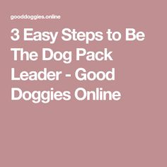 3 Easy Steps to Be The Dog Pack Leader - Good Doggies Online