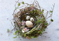 Easter wreath or table centrepiece...