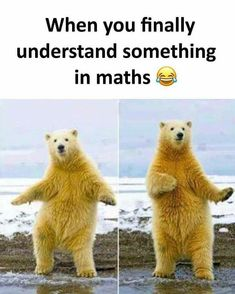 """Funny Miscellaneous Memes For Anyone Who Needs 'Em - Funny memes that """"GET IT"""" and want you to too. Get the latest funniest memes and keep up what is going on in the meme-o-sphere. Math Memes Funny, Memes Estúpidos, Funny School Jokes, Some Funny Jokes, Crazy Funny Memes, Funny Animal Memes, Stupid Memes, Funny Relatable Memes, Funny Facts"""