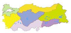 Türkiye Bölgeler Haritası (4).jpg