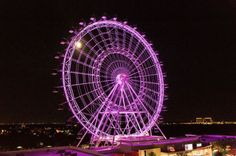 Orlando Eye Prince Tribute