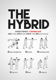 The Hybrid workout mixes weights and bodyweight exercises for a complete upper body strength one. Darbee Workout, Bodyweight Upper Body Workout, Upper Body Strength Workout, Home Boxing Workout, Abs Workout Routines, Dumbbell Workout, Workout Challenge, Month Workout, Kettlebell
