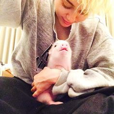 Miley and pig