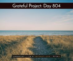 Today I'm grateful for a trail to paradise.  Everyday, take one step closer to your paradise.  Want a FREE Grateful bracelet in blue, black, or white? Tap there => http://GratefulProject.org/ #rbas #gratefulprojectday #tgpday804 #paradise #trail