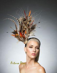 Pheasant feathers fascinator Pheasant headpiece by ArturoRios Feather  Headpiece 8c9b7816d34