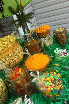 Safari themed Sweet & Sweets Buffet. *** Check out more at the picture  Learn more at  http://www.hwtm.com/index.cfm?page=albums/view_album&albumid=2214&photoid=26662
