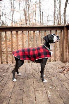 Dog Clothes Patterns, Sewing Patterns Free, Free Sewing, Dog Coat Pattern, Dog Crafts, Dog Jacket, Mundo Animal, Sewing Hacks, Sewing Tips