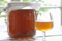 Cos'è il kombucha, il farmaco naturale dalle molte proprietà. Ecco la ricetta per prepararlo.