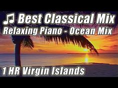 CLASSICAL MUSIC for Studying Playlist Mix Best Beethoven Bach PIANO Study Background Instrumentals