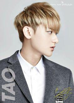 Tao profile cr: owner