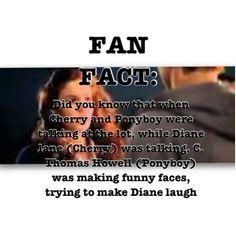 The Outsiders Fan Fact