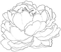 Impression Obsession Cling Stamp Pretty Peony By Leigh Hannan 769 Peony Drawing, Peony Painting, Floral Drawing, Fabric Painting, Watercolor Flowers, Painting & Drawing, Flower Sketches, Drawing Sketches, Art Drawings