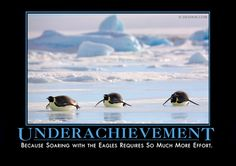Underachievement - Because soaring with the eagles requires so much effort.