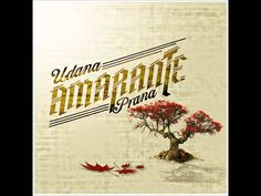 Amarante - Don't Look Back (Udana Prana Album) amazing song. i am absolutely in love!