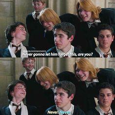 "2,278 Likes, 25 Comments - Harry Potter ⚯͛ (@purebloodswizards) on Instagram: ""[Goblet of Fire]"
