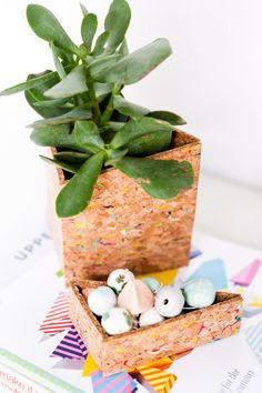 DIY office organizer (and planter) made of cork sheets