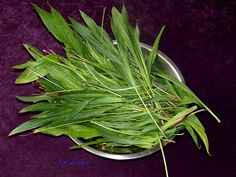 Moje Małe Czarowanie: Syrop z babki lancetowatej Home Remedies, Natural Remedies, Healthy Habits, Healthy Recipes, Polish Recipes, Lily Of The Valley, My Favorite Food, Mother Nature, Health And Beauty